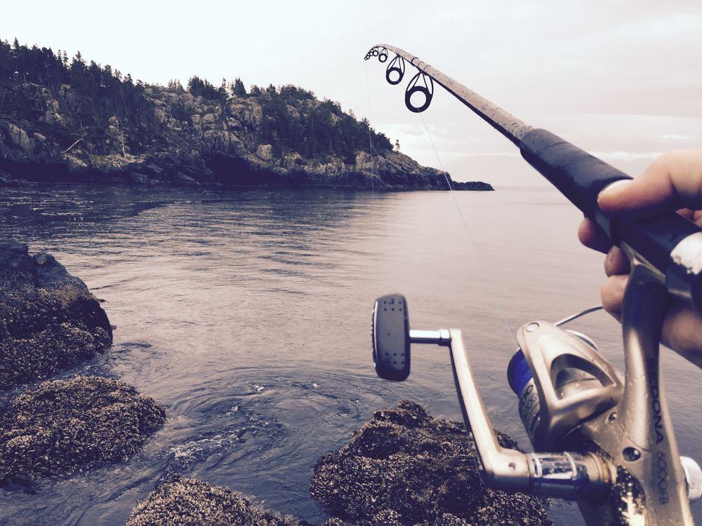 Kom ud og fisk hele året rundt her